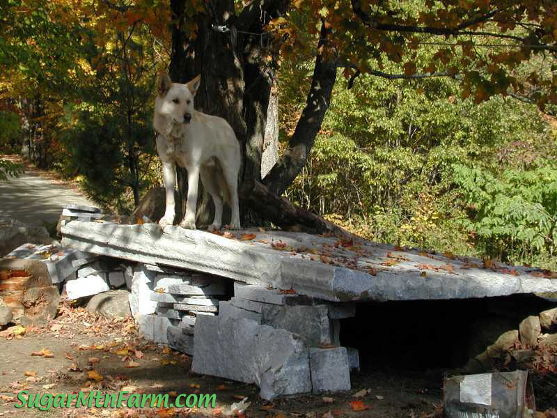 Granite and berm sugar mountain farm - Underground dog houses ...