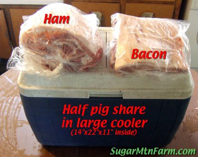 Pork in Cooler