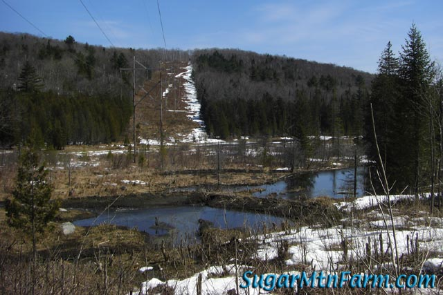 how to make a beaver dam farm
